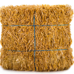 Wheat straw suppliers