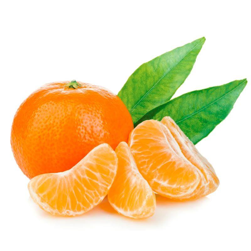 Mandarin Orange Exporters | Kinnow Orange